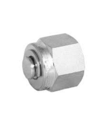 Compression fitting stainless steel plug Tetrapy